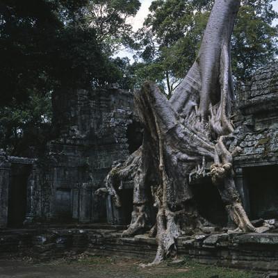 Expeditions - Vietnam 2013